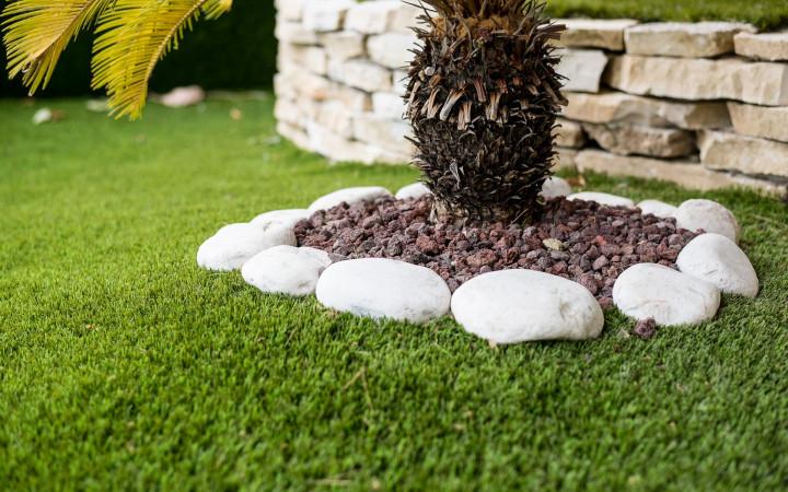Cane in giardino l 39 erba sintetica la soluzione ai tuoi - Quando seminare erba giardino ...