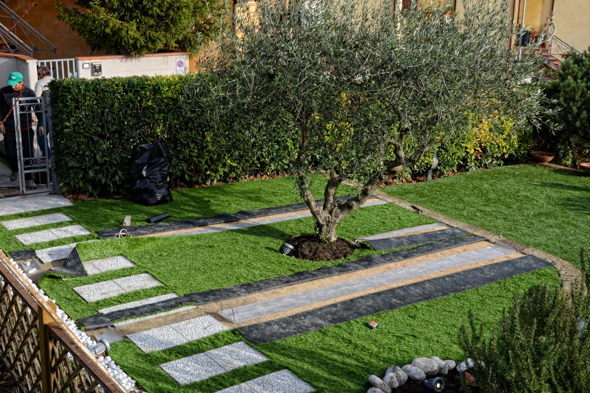 Come si posa l 39 erba sintetica da giardino - Giardino con ulivi ...